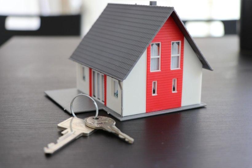 Tanel Rebane | Heitlik aeg paneb inimesi kodu ostma