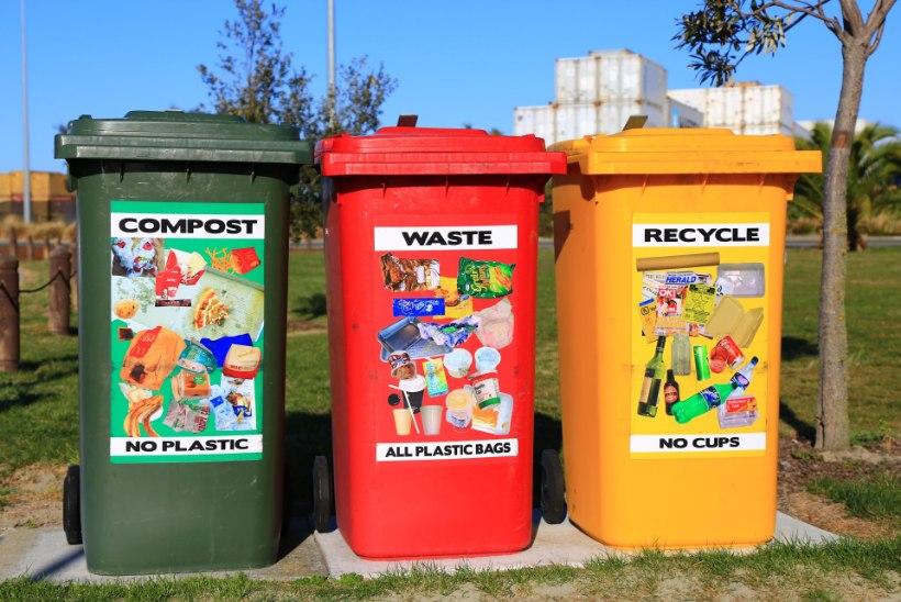 SELLE KUU MÄRKSÕNAD: tee vahet biolaguneval ja komposteeruval, tähista Maa tundi ja keera kella!