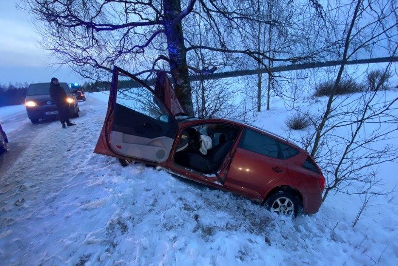FOTOD | Autojuht kaotas sõiduki üle kontrolli ja auto paiskus vastu puud