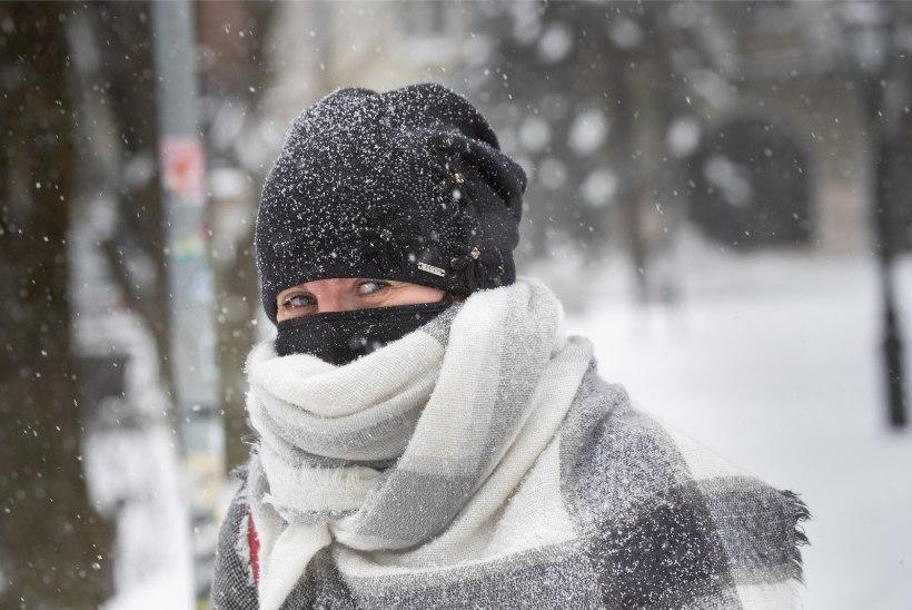 GALERII | Lumine maskeraad: ettevaatus paneb maski kandma isegi tuisuse ilmaga