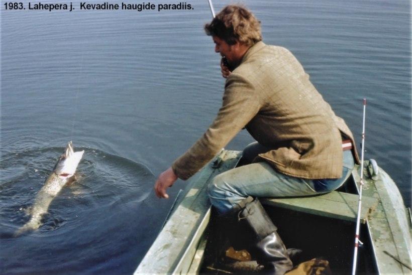 AJALUGU | Veterankalamees Katenevi päevikud 1983: aasta ilusaimad saagid tulid Peipsilt