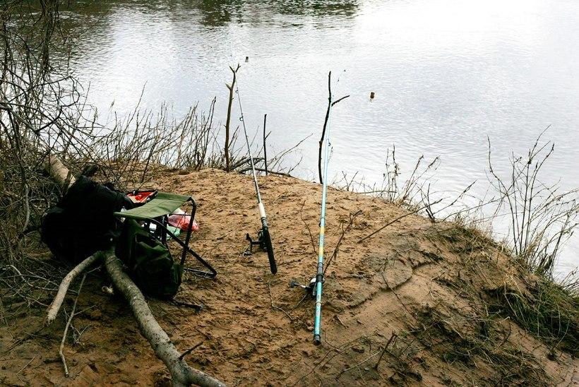 Püüame särge ja vimba Pärnu jõel