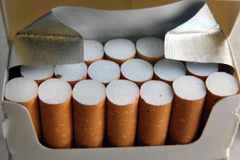 Kohus karistas suitsetanud last: ta pidi kirjutama loo selle kahjulikkusest