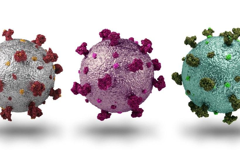 Koroona uued tüved arenevad vaktsineerimata ja nõrga immuunsusega nakatunutes