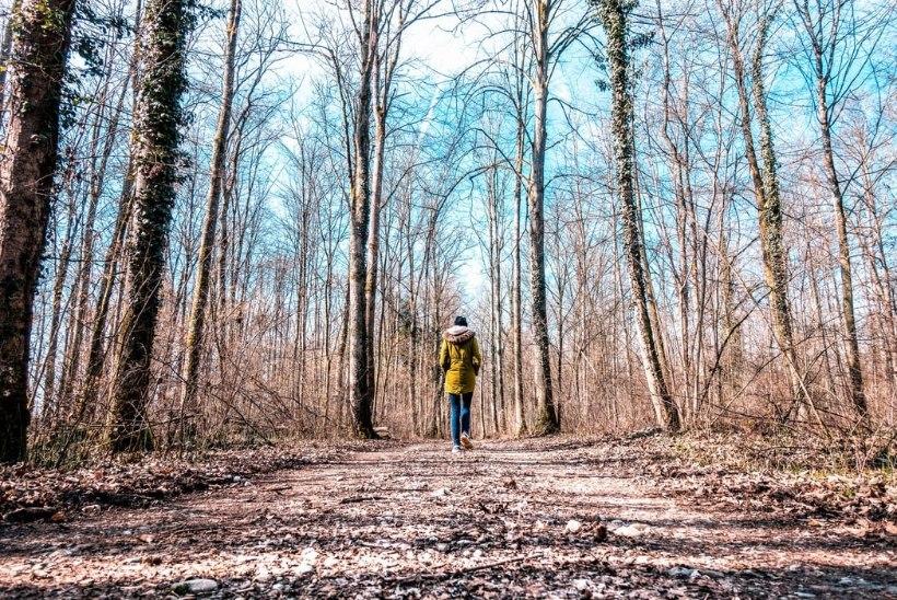 Aastaringne tervislik eluviis aitab kevadväsimust ennetada