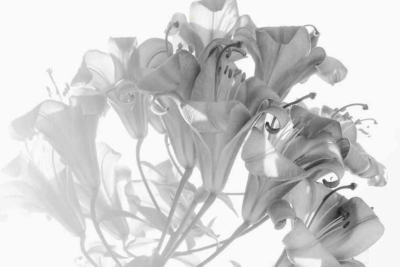 BLOGI | Aeda ja kodu kujundades: kus on maitsemeele juured?