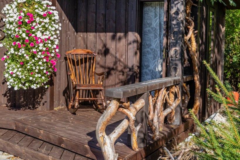 AIALUGU   Jõeäärne paradiis kaunite roosipõõsaste ja rikkalike lilleamplitega