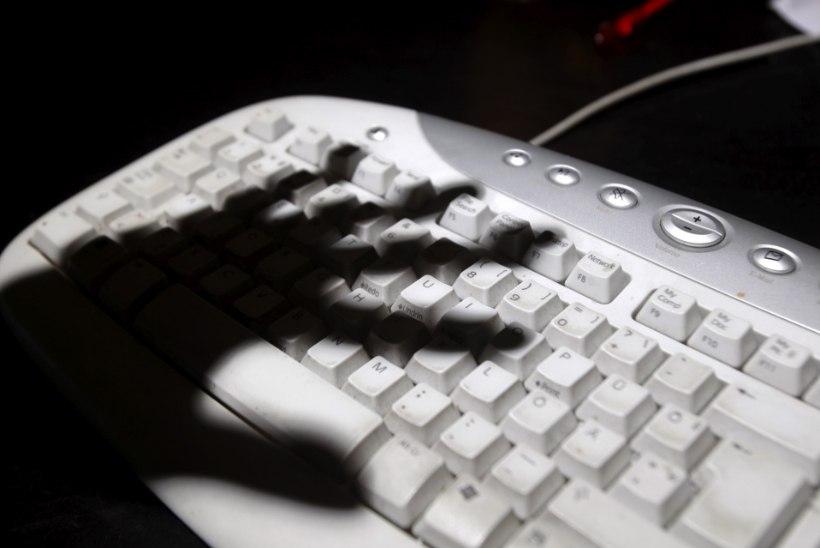 Tammo Otsasoo   Kuidas ennetada oma vara kaotamist internetipetturitele?