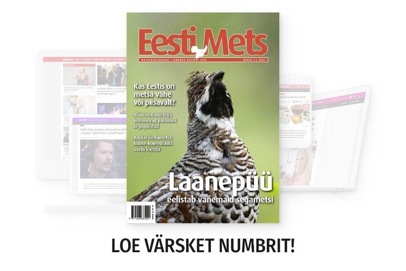 Eesti Metsa uus number on ilmunud!