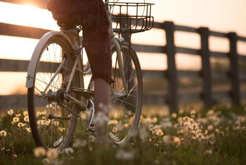 8 lihtsat nõuannet, mille abil saad jalgratta puhastamise ja hooldamise ise kodus tehtud