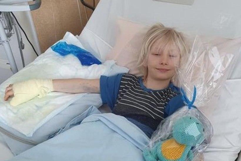 Rästikuhammustus viis väikse poisi haiglasse: uskumatu, kui palju üks laps suudab taluda!