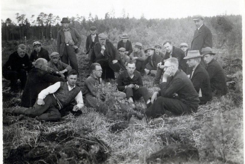Kroonika   Järvselja õppe- ja katsemetskonna 100 aasta juubel toob metsarahva kokku