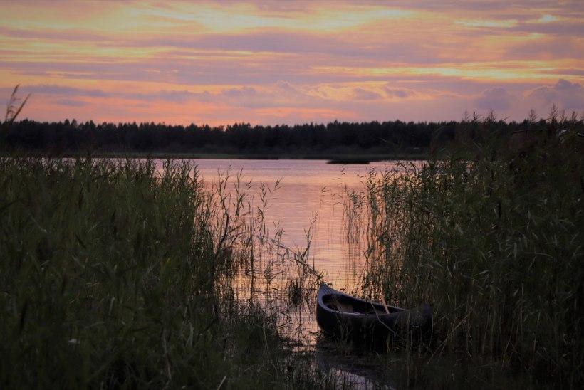 Ainulaadne Eesti: nii käib elu siinpool suursood
