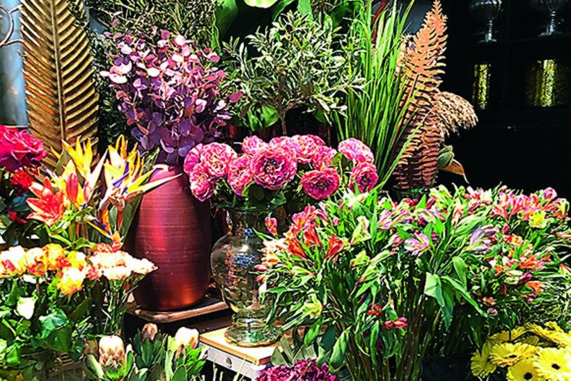 Rohevahetus on tänuväärt: nii võib aiatäie taimi saada lausa tasuta