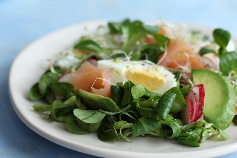 Kõhule kerge, aga toitev: avokaado-muna-lõhesalat