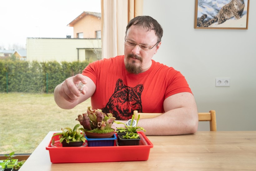 PÕNEV HOBI | Robert kasvatab putuktoidulisi taimi: püüan ise kärbseid, hakklihaga neid ära ei peta