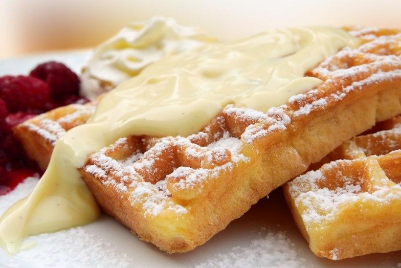 PROOVIME JÄRELE: milline on parim vanillipuding ahjusooja koogi kõrvale?