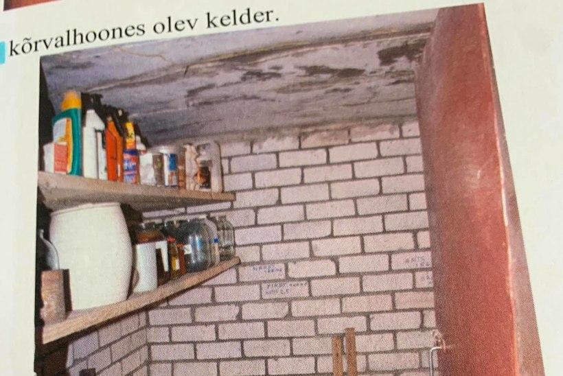 MIKS KEEGI EI MÄRGANUD? Kasulastega vägivallatsenud Malle Kobin käskis sekkujatel pere siseasjadest eemale hoida