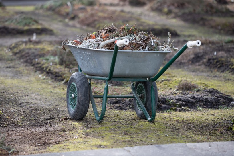 Mai alguse aiatöid: kärbi ja lõika, püga ja riisu