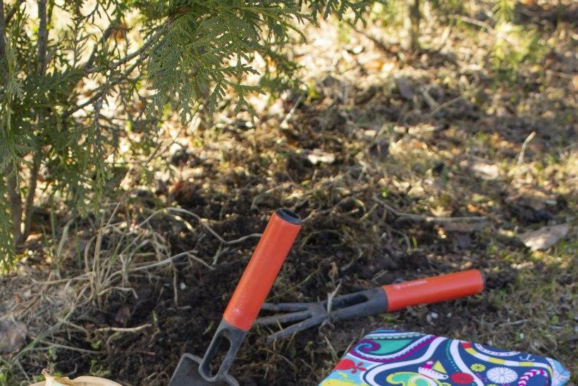 MAIKUU AIAMÄRKSÕNAD: tee rohesuppi, ehita põhupeenar ja meisterda aiatööde hõlbustamiseks pehme põlvepadi