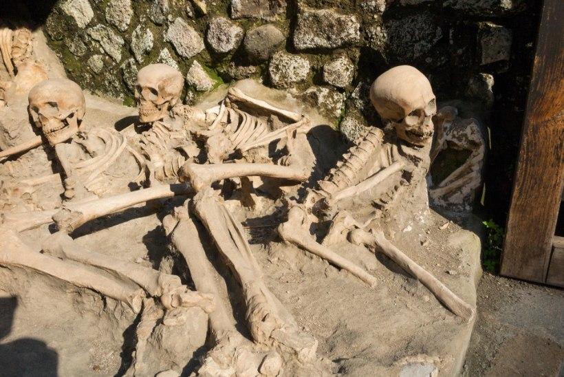 Arheoloogid tuvastasid Vesuuvi katastroofi kangelase säilmed