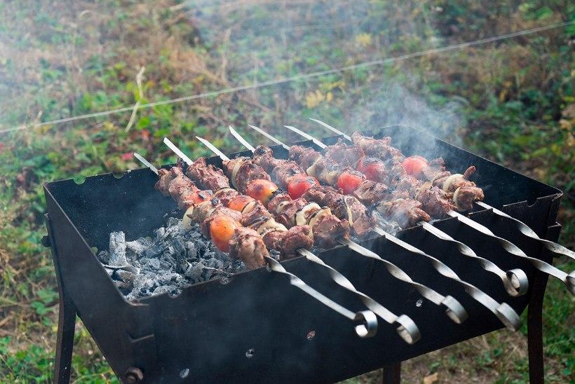 Avame grillihooaja: sibulaga marineeritud sealiha