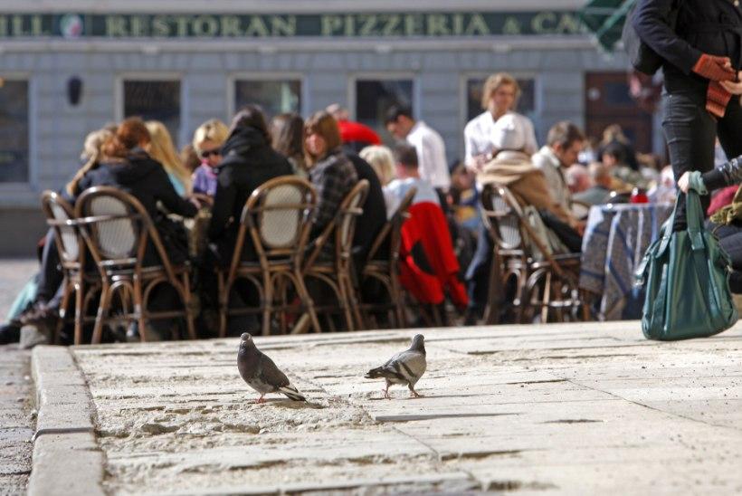 Lugejakiri | Välirestoranis tuleb süüa koos kõrvallauas einestavate lindudega