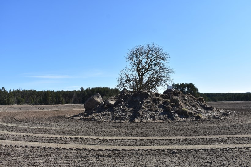"""Suur rüüstetöö Rootsi kuninga haual. """"Ma olin šokis. See on hauarahu rikkumine!"""" Prokuratuur lõpetas menetluse, aga kohus käskis edasi uurida"""