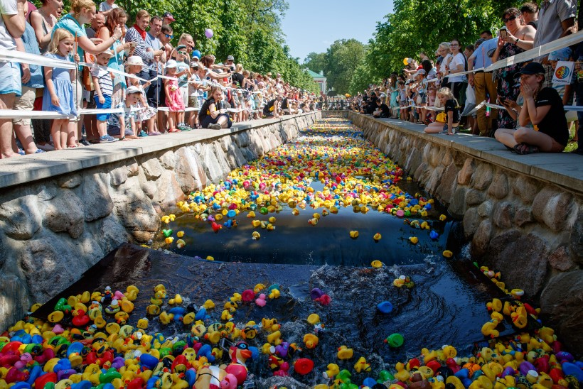 Tahad pardirallit võita? Füüsikud teavad, kuidas saad vannilelu kiiremaks muuta!