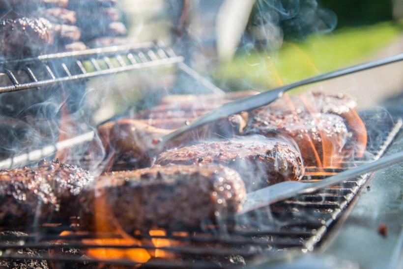 TEEME SELGEKS: kuidas leida just sinu pere vajadustele sobiv grill?