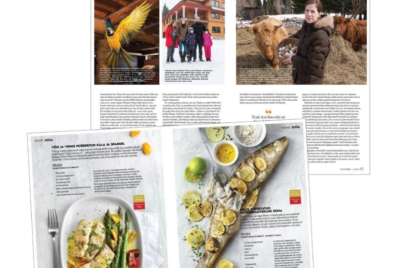 Lugejakirjad | Kodukirja lugejate muljeid aprilli ajakirjast