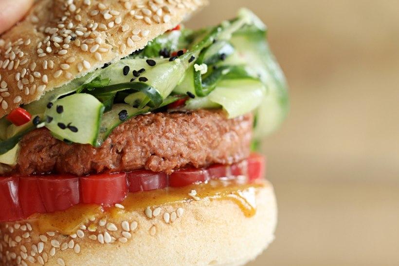 REEDE LÕUNAKS: burger aasiapärase kurgisalatiga