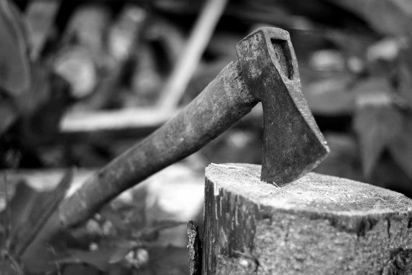 VERETÖÖ NÕO VALLAS: hullunud talunik tappis kirvega kogu oma perekonna