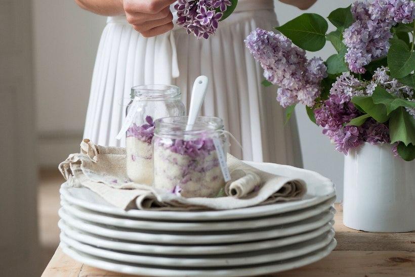 SIREL KÕLBAB SÜÜA! Vaata, kui lihtne on valmistada sirelivett, sireliõisi suhkrus, sirelisiirupit ja  sirelitega panna cottat