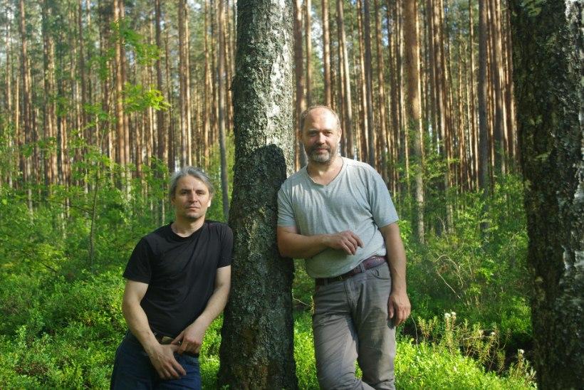 Eestlane õppis ennast metsarahvaks pidama alles viimase sajandi jooksul