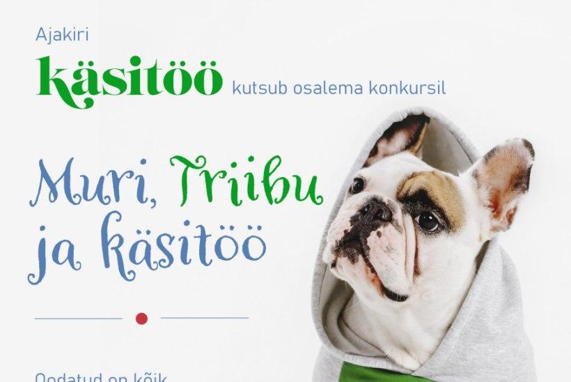 Ajakiri Käsitöö kuulutab välja lemmiklooma-teemalise konkursi!