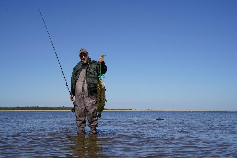 """Priit Toomits: """"Kui kalal käid, lendab köögis taldrikuid vähem."""""""