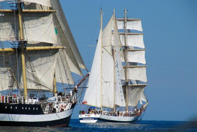 The Tall Ships Races lükkub aastasse 2024, selle asemel toimub juulis siiski uhke merepidu