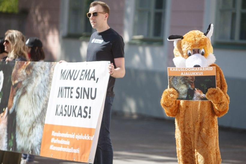 GALERII |  Loomakaitsjad kogunesid karusloomafarmide keelustamise eelnõu toetuseks