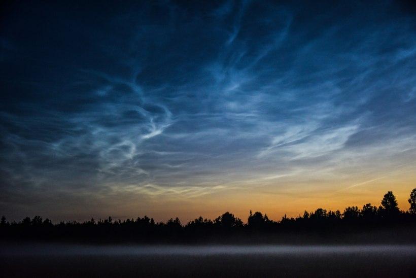 GALERII | Jaaniööl sai imetleda helkivaid ööpilvi