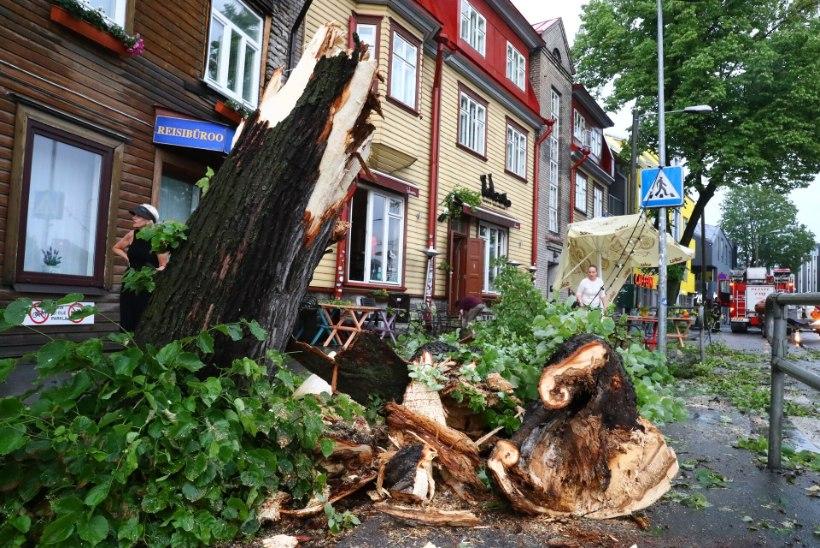 Pühad tõid päästele 578 väljakutset, rohkem kui pooled olid seotud tormiga