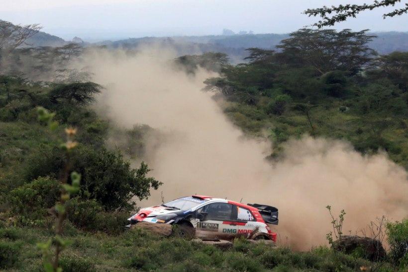 Ogier ja Tänak keerulise Keenia ralli kohta: nii meile meeldibki