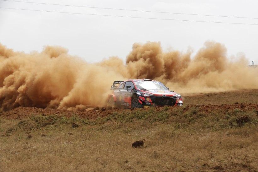 Sõitjad korralikult proovile pannud Keenia ralli jääb veel aastateks WRC-sarja kalendrisse