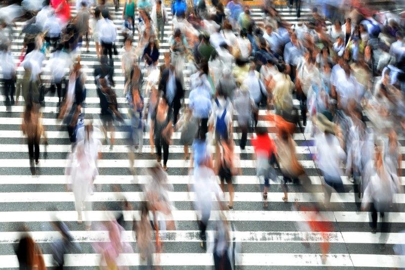 VIDEO | Graafikakaartide müügist kujunes totaalne kaos