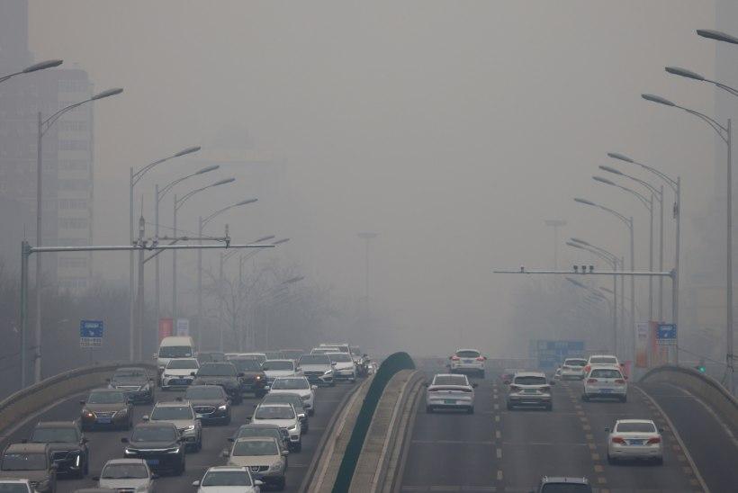 """Ökoloogi miniloeng: """"Õige varsti on värske õhk õues meie praeguse sumbunud toaõhu moodi."""""""