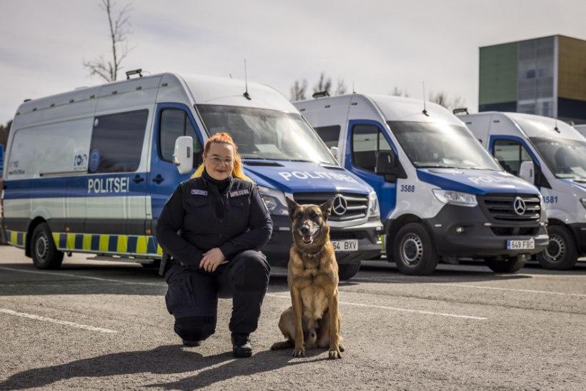 Abipolitseinik Marianne Ubaleht: arvasin, et selle ametikoha saamiseks peab olema suur ja tugev mees