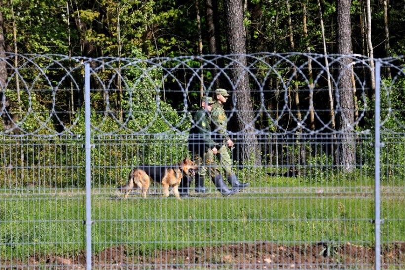 Leedu võimud: Valgevene aitab sadadel migrantidel meie piiri ületada!