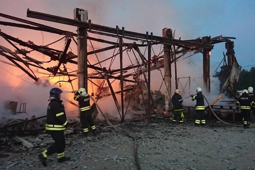 FOTO   Kuusalu puidutööstus hävis tules