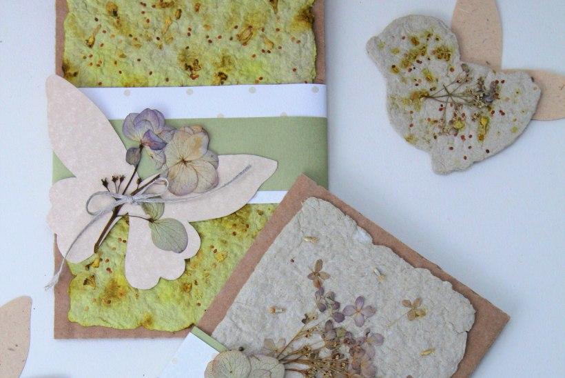 Kuidas teha kaunist kaarti seemnepaberist?