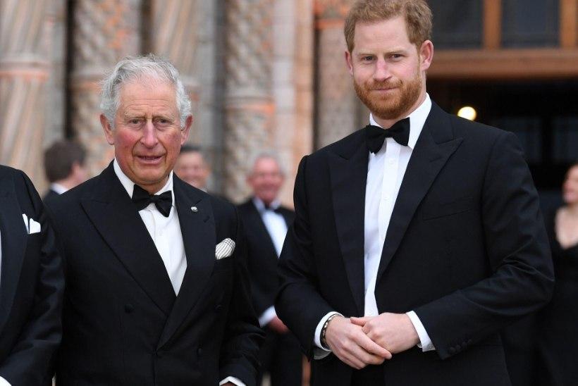 Prints Charles kommenteeris esmakordselt uue lapselapse sündi